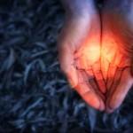 Медитация «Образ здоровья» (метод Сильва)