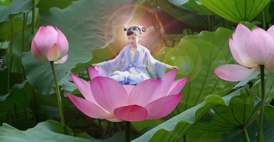 meditacija-na-cvety-lotosa